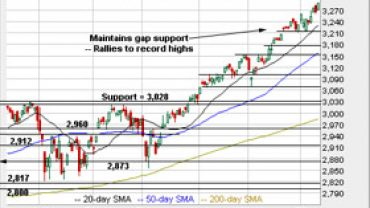 the-technical-indicator:-charting-a-bullish-2020-start:-s&p-500-extends-break-to-record-territory