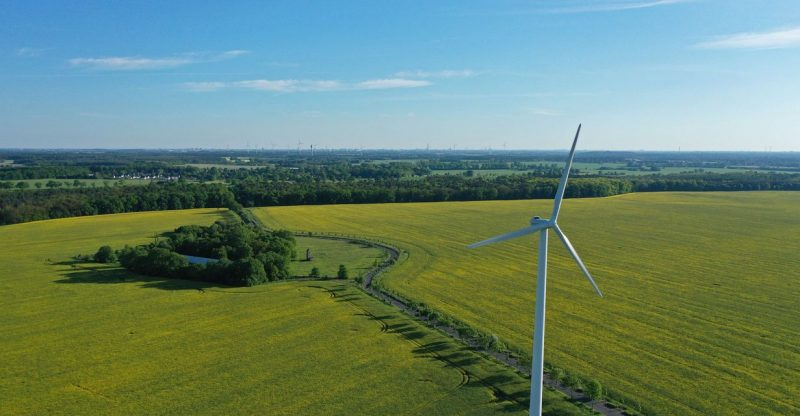 :-arkansas-wind-farmers-claimed-their-technology-was-more-efficient-than-turbines-—-then-spent-investors'-money-on-houses,-cars-and-at-disney-world