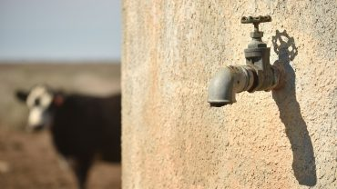 meat-companies-are-the-worst-at-managing-water-risk-—-and-it's-costing-them,-study-finds