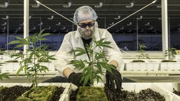 cannabis-watch:-aurora-cannabis-on-ceo-search-during-a-pandemic:-drone-tours,-no-handshakes